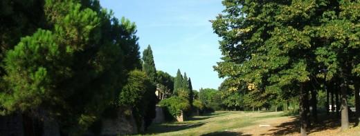 Rimini_Parco_Cervi