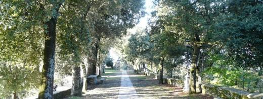 Santuario_di_Montallegro-viale