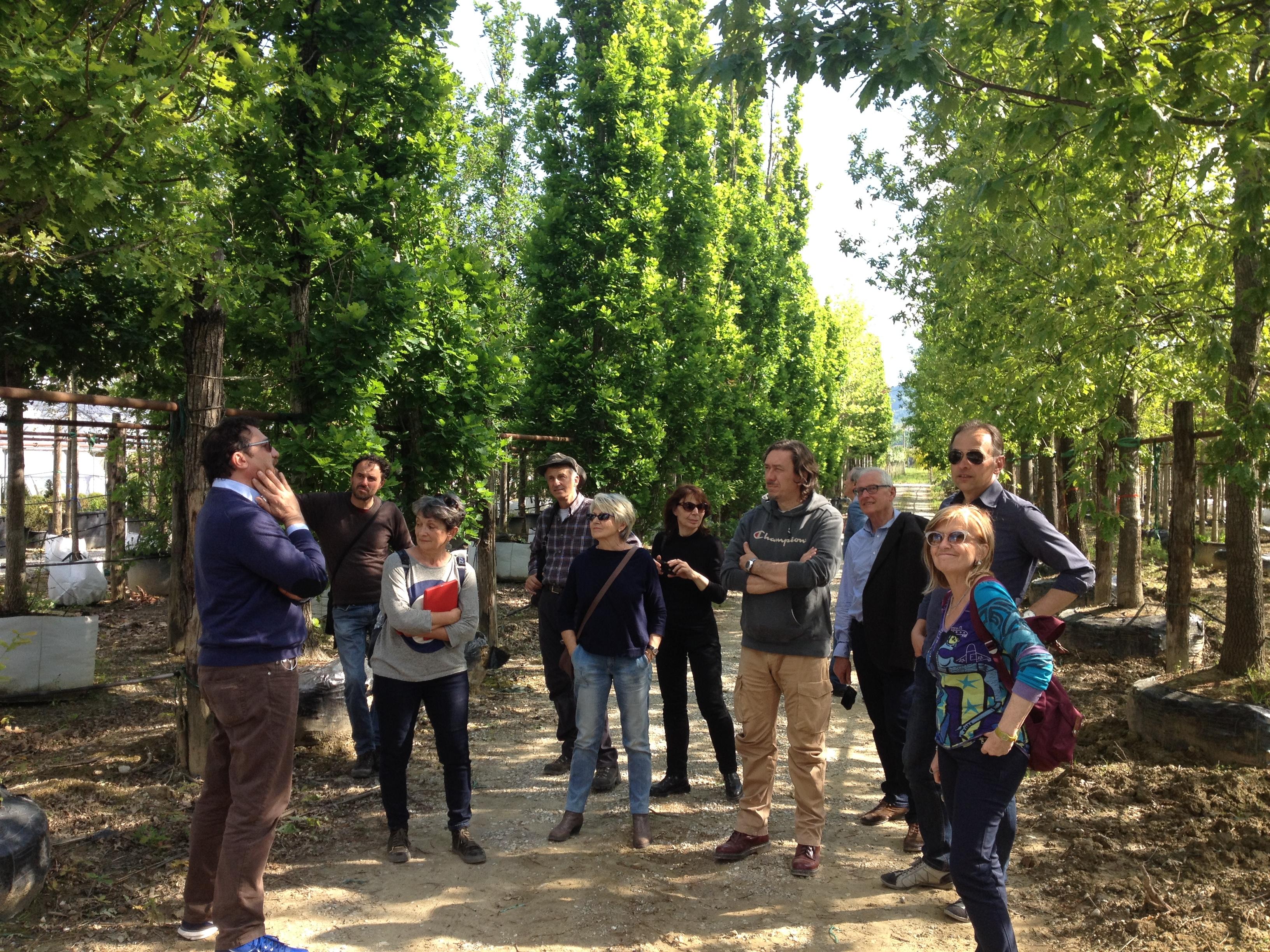 Visita ai vivai di pistoia pubblici giardini for Vivai a pistoia